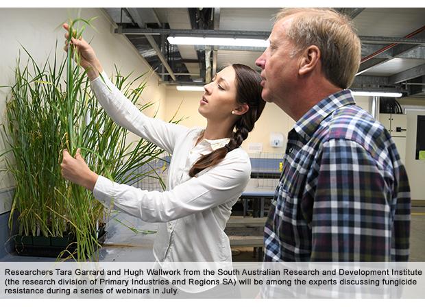 Webinars target fungicide resistance in crops