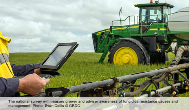 Seeking grower and agronomist insights on fungicide resistance