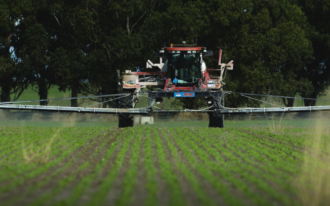 How does fungicide resistance develop?